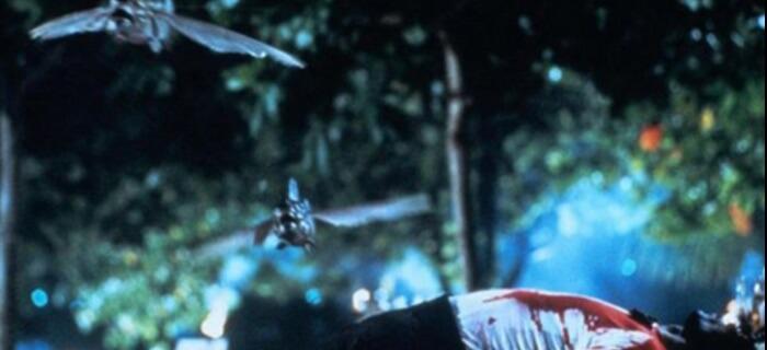 """O filme trash - """"Piranhas 2 - Assassinas Voadoras"""""""