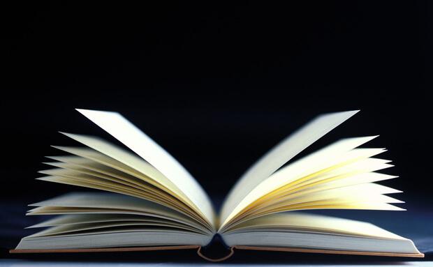 Pesquisa aponta que brasileiro lê em média 2 livros e meio ao ano.